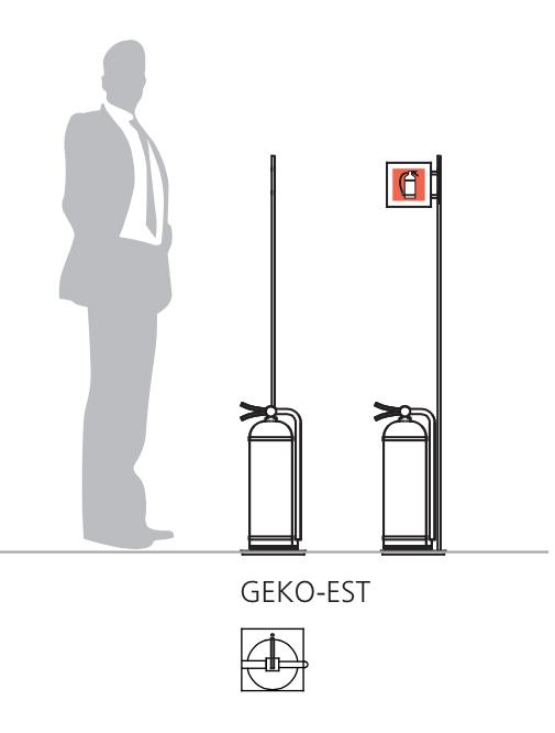 Grafico-Geko